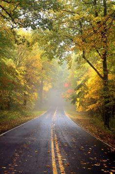 Chaupham Photography / perfect fall drive