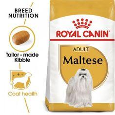 Maltese Adult 1,5kg Yorkshire Terriers, Pet Online, Les Croquettes, Dog Ages, Malteser, Large Dog Breeds, Dry Dog Food, Strong Body, Fish Oil