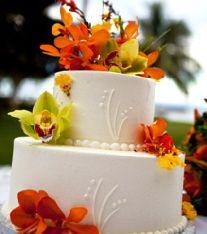 Tropical Island & Beach Cake