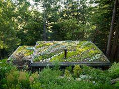 Je dak loopt over in de tuin, heerlijk die natuurlijke vormgeving! #tuinen