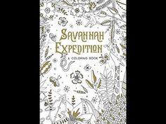 Savannah Expedition by Miranda Gillmore