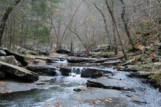Winthrop P. Rockefeller Boy Scout Trail - 12 miles - moderate to hard. Petit Jean State Park, Boy Scouts, Waterfalls, Arkansas, State Parks, Trail, Hiking, Events, History