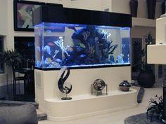aquarium mural pas cher pour le salon