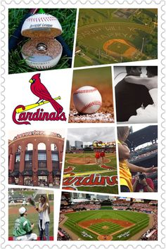 Cardinals baseball proposal wish!