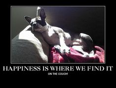 """""""Happiness is where we find it"""""""