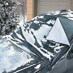 11 Best Windshields Images Autos Cracked Windshield