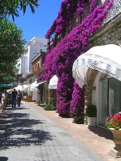 Capri...great boutiques on this street...down the road is Villa Saint Michelle, the most incredible story behind this garden & home. We loved Capri!