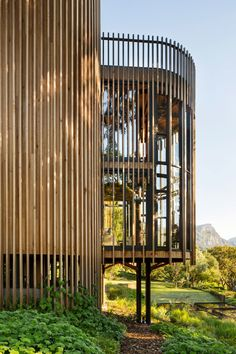 A Contemporary Tree House Near Cape Town, South Africa