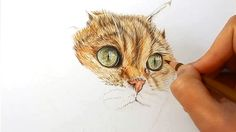 In this video I explain how I draw fur of a cat with colored pencils. Check out…