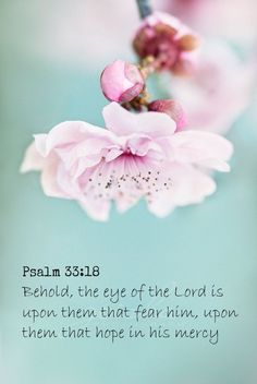 Psalm 33:18  KJV,,,,, Behold, the eye of the Lord is upon them that fear him, upon them that hope in his mercy;