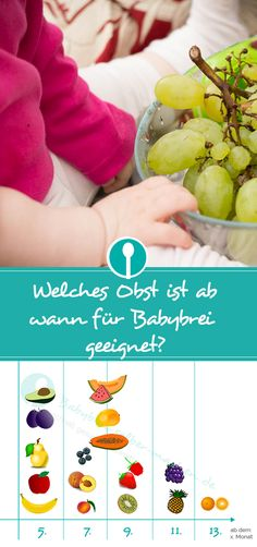 Which fruit is suitable for baby porridge from when - infographic-Welches Obst ist ab wann für Babybrei geeignet – Infografik Which fruit is suitable for baby porridge from when? Clear infographic for printing. Baby Zimmer, Frijoles, Homemade Baby Foods, Baby Led Weaning, Healthy Fruits, Baby Hacks, Baby Feeding, Baby Sleep, Kids And Parenting
