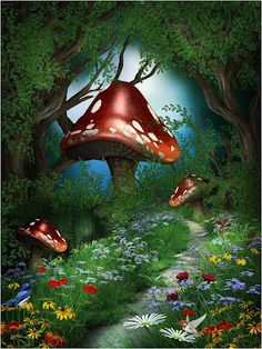 Alice In Wonderland Photography Backdrops With Flowers Photo Studio Props Tairy Tale Theme Party Photo Background For Kids Birthday Room Decoration Magical Forest, Forest Fairy, Forest Garden, Woodland Fairy, Fantasy Forest, Fantasy World, Fantasy Kunst, Fantasy Art, Photo Backgrounds