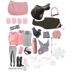 Frosty morning ride by jump-the-stars on Polyvore featuring Mint Velvet, The North Face, Akira Black Label, Joie, Casetify, Uniqlo, CB2, Roeckl and Lorenzini
