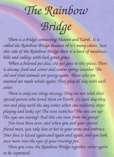 It includes a interesting rainbow bridge poem.There is a bridge connecting the beautiful sky and earth/ It is called the rainbow bridge because of its color. Dog Poems, Dog Quotes, Animal Poems, Poems About Dogs, Dog Heaven Quotes, Horse Quotes, Animal Quotes, Life Quotes, Rainbow Bridge Dog