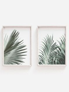 Set of 2 PrintBotanical PrintsHome DecorLeaf PrintWall Art Frames On Wall, Framed Wall Art, Wall Art Decor, Leaf Prints, Wall Art Prints, Green Wall Art, Leaf Art, Wall Art Sets, Botanical Prints