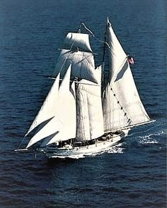 """The """"Californian"""", official tall ship of the state of California--a loose replica of the 1849 Revenue Cutter C.W. Lawrence that spent its years patrolling the California coast."""