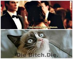 How dare you say that to Damon! After ALL he's done for you?! After all he's put up with for you?!