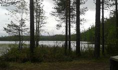 Puinen maisema järvenrannalla