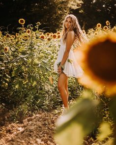 sunflower field photoshoot • summer photos • portrait photographer • flowers • #photoshoot #photography #photographer #sunflower #flowers Sunflower Fields, Summer Photos, Pregnancy Photos, Portrait Photographers, Cute Pictures, Photo Shoot, Maternity, White Dress, Flowers