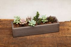 """From Auré Aura: Concrete Planter - 13"""" Graphite This refined concrete planter is handmade and offers a warm signature look throughout."""