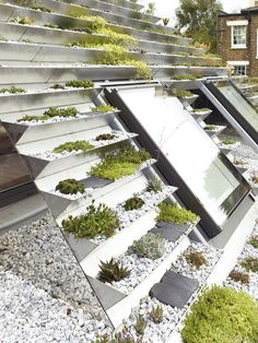 This green roof on a home in London, has a series of terraced stainless steel planters filled with over 800 plants.