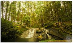 Deep forest Gundar waterfalls in serene surroundings