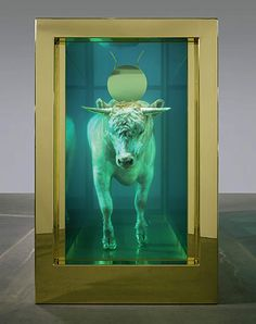 The Golden Calf, 2008 (without plinth) by Damien Hirst © Damien Hirst and Science Ltd. All rights reserved, DACS/Artimage Photo: Prudence Cuming Associates Ltd Laura Lee, Art Sculpture, Sculptures, Damien Hirst Art, Art Conceptual, Golden Calf, Art Occidental, Gcse Art Sketchbook, Gagosian Gallery