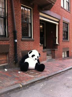 giant panda passed out on the streets of beacon hill, courtesy of BostonTweet