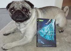 """Sein neues Kunststück: """"Halt das Buch"""" beherrscht er schon sehr gut. :-)"""
