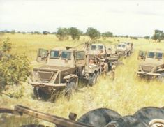 Photos of Operation Sceptic, 1980 Once Were Warriors, Military Archives, Military Engineering, South African Air Force, Army Day, Defence Force, Armored Fighting Vehicle, Tactical Survival, Military Weapons