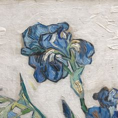 Irises (detail), Vincent van Gogh.