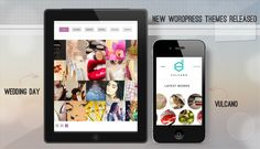 We are happy to announce the release of 2 Brand New Premium WordPress Themes.