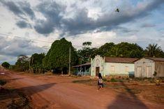 The Guardian, Ecology, Brazil, Country Roads, Activists, Amazon, World, Digital, Photos