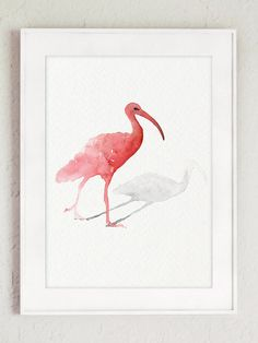 Scarlet Ibis Minimalist Artwork Pink Painting Home Decor. Bird Watercolor Poster Animal Wall Painting. Tropical Bird Wall Decor. Gift Idea Art Print. Ibis Abstract Animal Art Illustration. Type of paper: Prints up to (42x29,7cm) 11x16 inch size are printed on Archival Acid Free