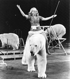 """Circus animal trainer Ursula Böttcher, known as the """"Polar Bear Princess"""". She was famed for her kindness towards her bears, whom she treated as her children."""