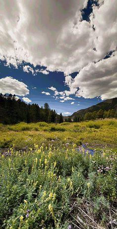 Lost Creek Wilderness in Spring, Colorado