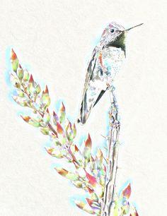 'Hummingbird Delight' by Lisa S. Baker #hummingbird #nature #bird #artwork #wallart