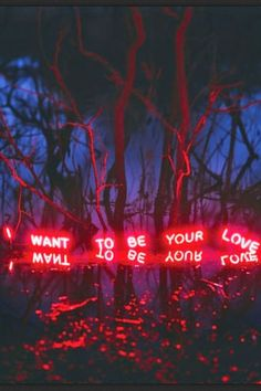 Is there anything quite as visually striking than a beautiful quote or piece of poetry written in neon lights? These are a few of our favourite neon light works by artists Tracy Emin and Tim Etchells, among others. If we could have every single one of them in our homes we would. They make you feel all the feels. We dare you not to.