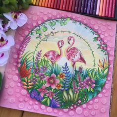 Um colorido encantador! Repost from @siqueiraleite #artecomoterapia  #semfiltro #semestress #amoascores #amocolorir #terapiando #terapia #colorindolivrosadulto #coloringbook #coloriage #johannabasford #johannabasfordcoloringbook #selvamagicaoficial #selvamagica #flamingos #marcorennoir #maped  #kum4in1 #gizpastelseco #paixaoporcolorir #paixaoporlapisdecor #trisoficial #grupoflordemaio #boracolorirtop #desenho #arte_e_colorir #artecomoterapia @desenhoscolorir @artecomoterapia @bayan_boyan…