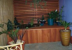 A desire to hide the wheelie bin area inspired this DIYer to create a backyard oasis. Handyman Magazine, Timber Screens, Pond Water Features, Decks, Oasis, Backyard, Inspired, Create, Projects