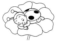 Here is Ladybug Coloring Sheets for you. Ladybug Coloring Sheets ladybug coloring page ladybug coloring page bug coloring. Bug Coloring Pages, Ladybug Coloring Page, Printable Flower Coloring Pages, Animal Coloring Pages, Coloring Pages For Kids, Coloring Sheets, Coloring Books, Mandala Coloring, Adult Coloring