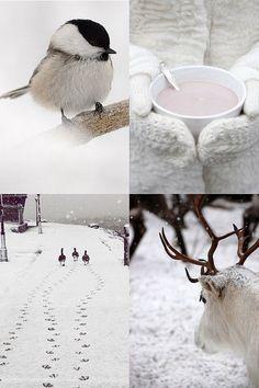 hoe mooi kan de winter zijn….., zo mooi dus!