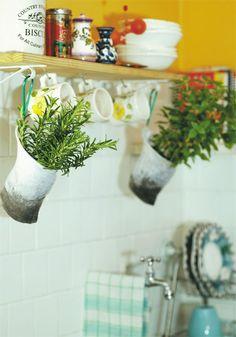 O coador de café pode deixar as hortaliças fresquinhas.