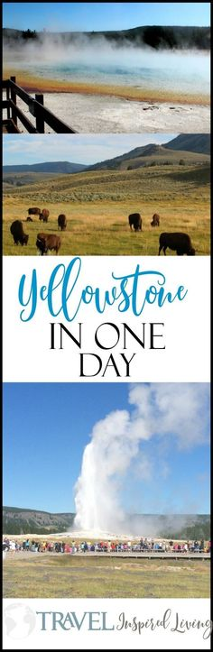 Planning a trip to Yellowstone National Park in the United States, but have limited time to explore? It is possible to experience Yellowstone in one day. Here's how. #TravelDestinationsUsaWest