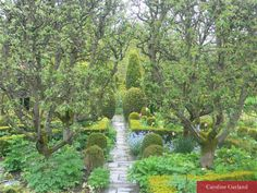 Soft, pretty chaos in the rain – Barnsley House, Glos