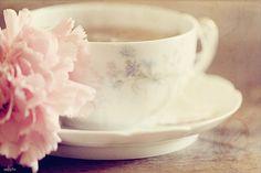94/366 vintage texture teacup pink carnation