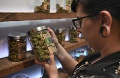 Weed shops, lounges, delivery services can apply for licenses in WeHo starting in January