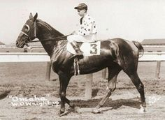 Son of Gallant Fox, Omaha won the Triple Crown in 1935, just five years after his sire. The following year, he was put aboard a ship and taken to Great Britain, where he engaged in four races (winning twice and placing twice). On June 18th, Omaha ran in front of an astonished crowd of more than 200,000 spectators. His lifetime earnings were in excess of 154,000 dollars.