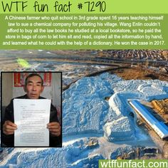 Chinese farmer teaches himself law for 16 years to sue a company - WTF fun fact == this is awesome, but honestly he shouldn't HAVE to do this!!! It should be in EVERY person's self interest not to pollute!!! Why is this so hard?