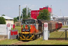 Hungary, Train, Attila, Strollers
